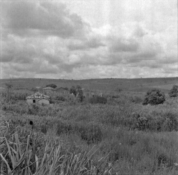 Fazenda antiga de café em Avanhandava (SP) - 1960