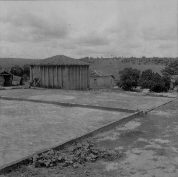 Terreiro de café em Avanhandava (SP) - 1960