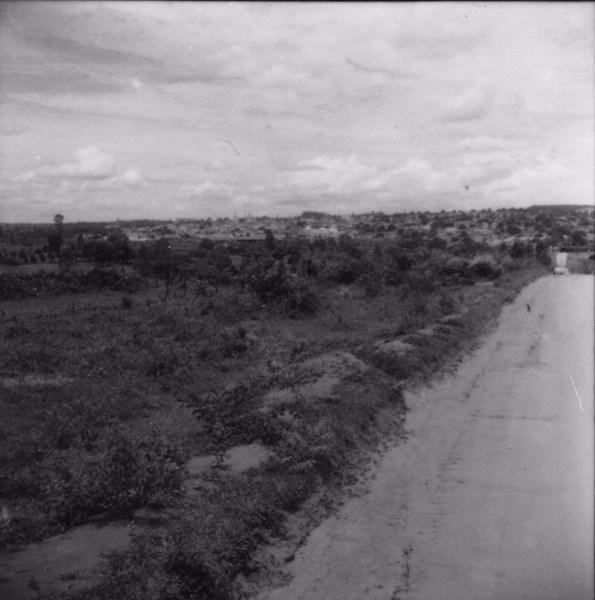 Sítio : Município de Bebedouro (SP) - 1960