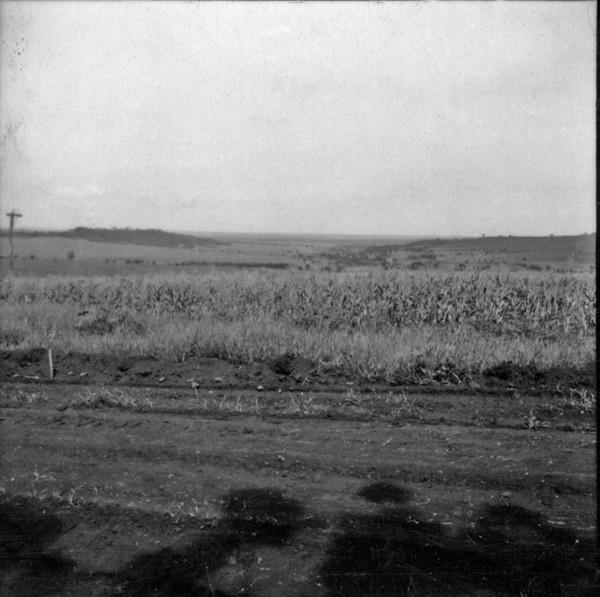 Relevo no município de Guará (SP) - 1960