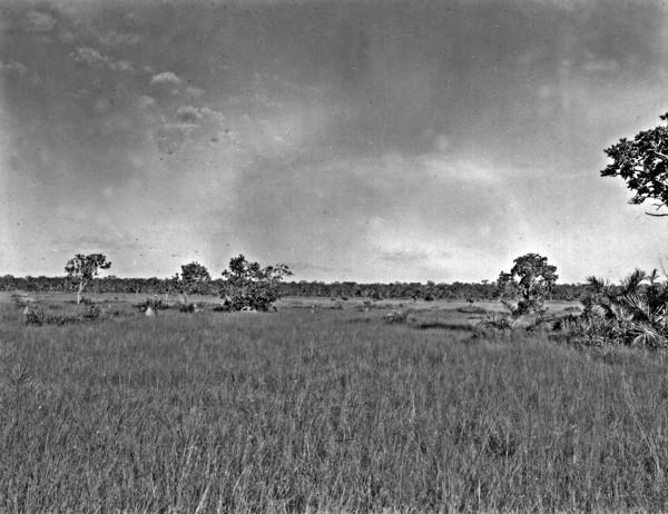 Várzea do Tocantins depois de Peixe (TO) - 1953