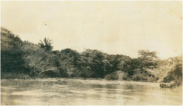 Rio Juruá : Carauari (AM) - [19--]