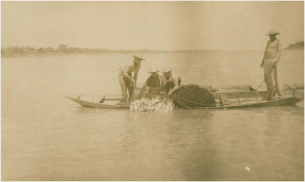 Rio Negro : [canoa de pescador] : Careiro da Várzea (AM) - [19--]
