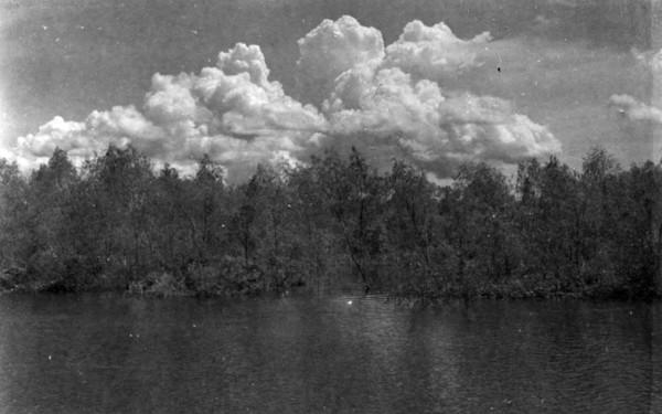 Uraneira perto de Iranduba (AM) - 1953