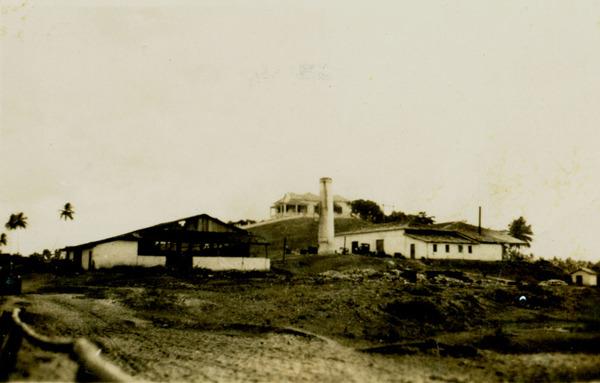 Fazenda Morro da Graça : Empresa Brasileira de Óleos : Esplanada, BA - 1949