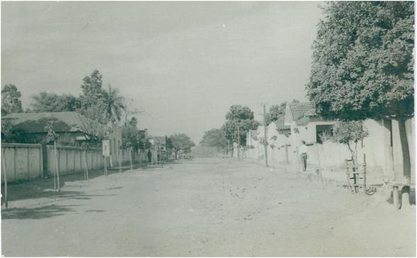 Rua das Palmeiras : Anicuns, GO - [19--]