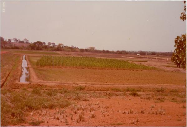 Embrapa – Centro de pesquisa : Brazabrantes, GO - 1983