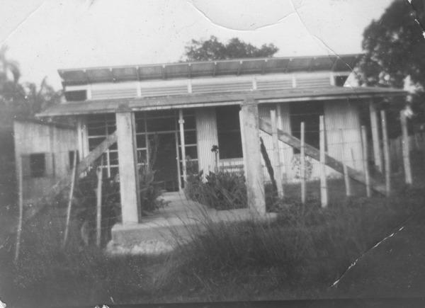 Plantação de malva em Castanhal (PA) - 1953